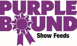 Purple Bound Show Feeds logo