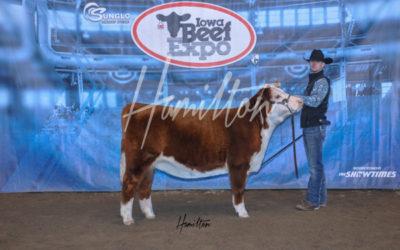 B Herf Champ 19
