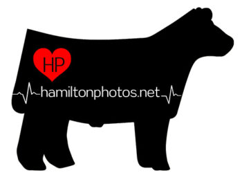 hamilton-photos-logo2020
