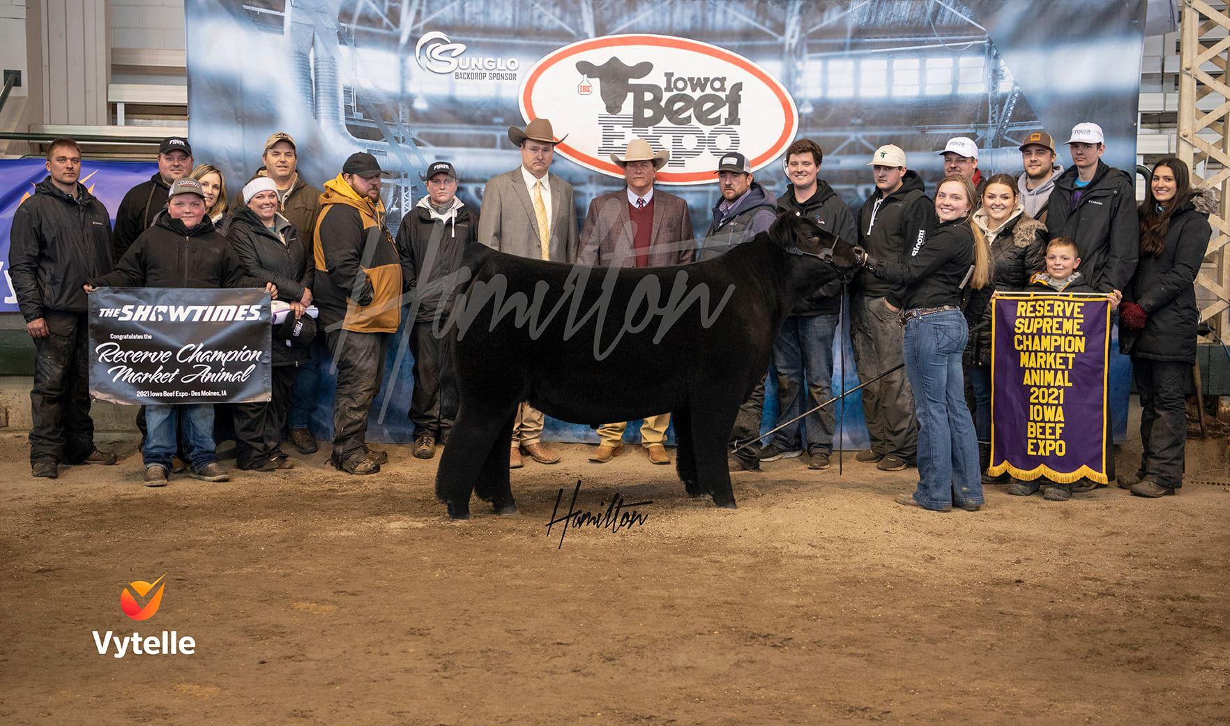 Res Champion Market Steer
